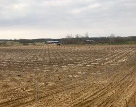 Valea lui Mihai – Vorbereitung Grundstück