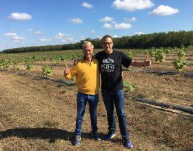 Plantagenbesuch der Geschäftsleitung in Valea lui Mihai September 2017